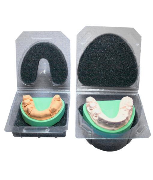 Прозрачная упаковка для гипсовых моделей (thumb15870)